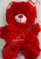 send gifts to bangladesh, send gift to bangladesh, banlgadeshi gifts, bangladeshi Soft Teddy Bear