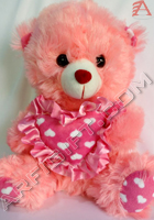 send gifts to bangladesh, send gift to bangladesh, banlgadeshi gifts, bangladeshi Cute Teddy Bear
