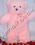 send gifts to bangladesh, send gift to bangladesh, banlgadeshi gifts, bangladeshi Long Teddy Bear