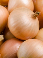 send gifts to bangladesh, send gift to bangladesh, banlgadeshi gifts, bangladeshi Imported Onion