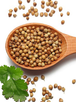 send gifts to bangladesh, send gift to bangladesh, banlgadeshi gifts, bangladeshi ধনে / Coriander