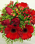 send gifts to bangladesh, send gift to bangladesh, banlgadeshi gifts, bangladeshi Exclusive Gerbera