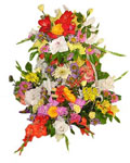 send gift to bangladesh, send gifts to bangladesh, send Mix Flower to bangladesh, bangladeshi Mix Flower, bangladeshi gift, send Mix Flower on valentinesday to bangladesh, Mix Flower