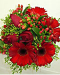 send gifts to bangladesh, send gift to bangladesh, banlgadeshi giftsGerbera