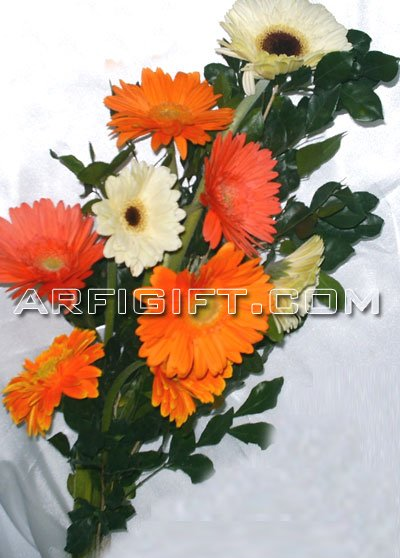 Send Exclusive Gerbera  to Bangladesh, Bangladesh Newspaper, Bangladeshi gift, send gifts to bangladesh, send gift to bangladesh