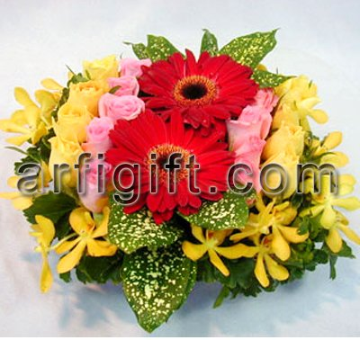 Send  Gerbera With Rose to Bangladesh, Send gifts to Bangladesh
