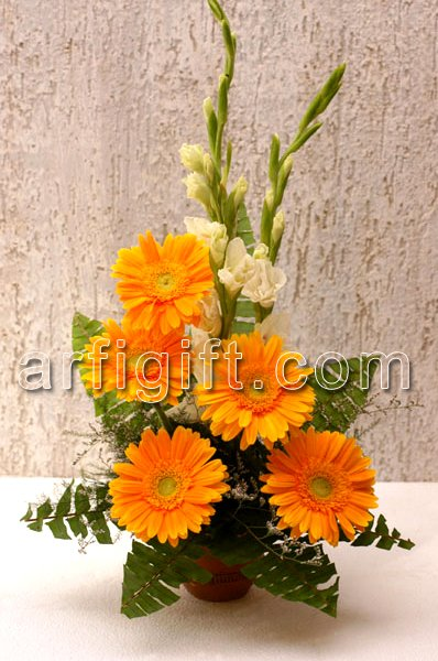Send Gerbera Basket to Bangladesh, Bangladesh Newspaper, Bangladeshi gift, send gifts to bangladesh, send gift to bangladesh