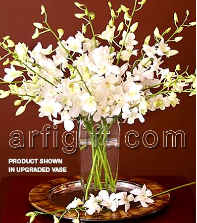 Send White Orchid + Vase to Bangladesh, Send gifts to Bangladesh